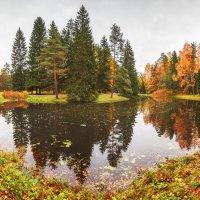 Осенний уголок Павловского парка :: Александр Кислицын