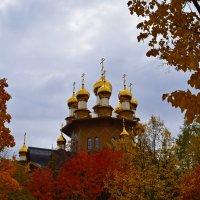 Осень :: Алина Муравлева