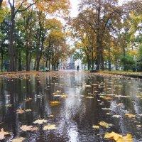 В саду Шевченко :: Наталья Тимошенко