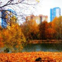Дождь в золоте октября... :: Андрей Головкин