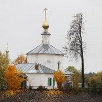 Осенние мотивы :: Татьяна Богачева