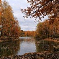 День ото дня мрачнее краски октября :: Татьяна Ломтева