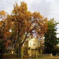 Знаменская (Лицейская) церковь в Пушкине :: Елена