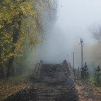 Утро в парке :: Наталья Скипина