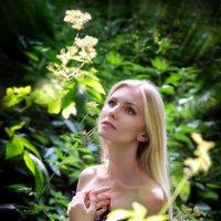 Среди цветов... :: Андрей Войцехов