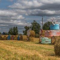 Праздник Урожая в республике Беларусь :: Игорь Сикорский