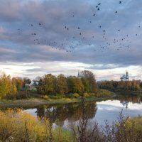Птицы над осенним городом :: Татьяна Копосова