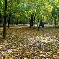 Осенний парк :: Ольга Степанова