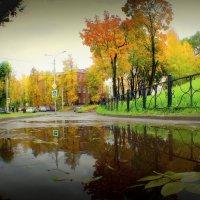 Зеркало осени. :: Игорь