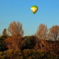 Осенний полёт :: Alexander Andronik