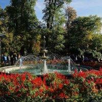 в Городском саду :: Александр Корчемный