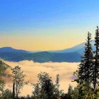 Густой туман в долине :: Сергей Чиняев