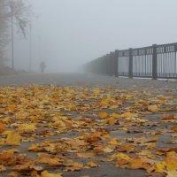 Туман над рекой :: Елена Загородская