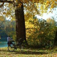 Осень-время раздумий... Время подумать, додумать, решить,... :: Galina Dzubina
