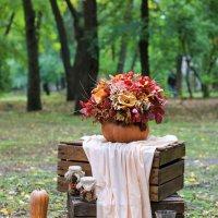 Осень :: Владимир Переклицкий