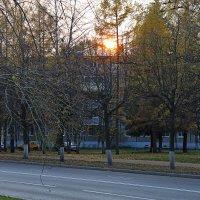 Осеннее солноце :: Andrew