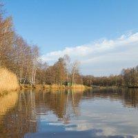 Осень в парке :: Виталий