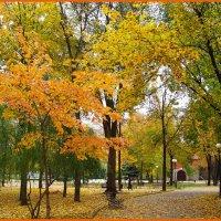 Осень.... :: Любовь К.