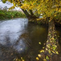 Осень... :: Влад Никишин