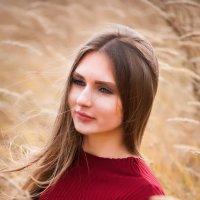 Ветер в поле :: Вероника Белецкая