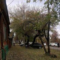 Осень на окраине :: Эльдар (Eldar) Байкиев (Baykiev)