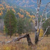 Осень ... :: Николай