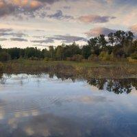 Уж небо осенью дышало.... :: Ольга П