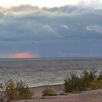 Финский залив, вечер :: Наталия П