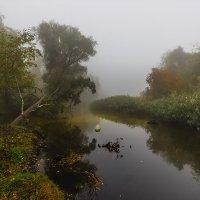 Протока в октябре. :: Павел Петрович Тодоров