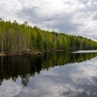 Карелия. Озерный край. :: Владимир Лазарев