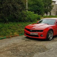 Chevrolet Camaro :: Dmitry i Mary S