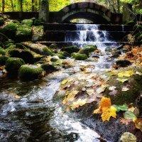 Осенний водопад :: Сергей Базылев