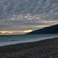 Черноморское побережье в Гаграх :: Ирина Никифорова