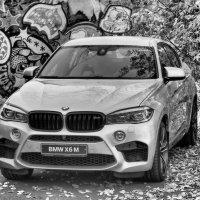 BMW X6 :: Константин Батищев