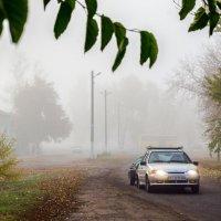 Густой утренний туман. :: Владимир M