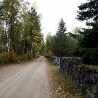 Страна Suomi. Иматра. :: Лариса (Phinikia) Двойникова