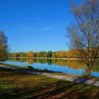 Красотка Осень... :: Galina Dzubina