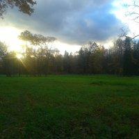 Осенний вечер :: Сапсан
