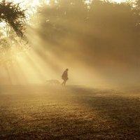 В солнечных лучах :: Alexander Andronik