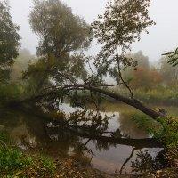 Осенний покой. :: Павел Петрович Тодоров