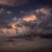 Небо цвета моей печали..... :: Elena Izotova