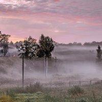 Туман.... :: Viacheslav Birukov