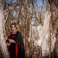 Ведьма :: Олеся Романова