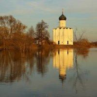 Церковь Покрова на Нерли :: ninell nikitina