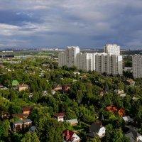 Москва :: Tata Wolf