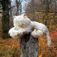 Ужасы нашего леса... :: Андрей Заломленков