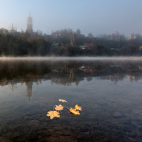 Осень :: дмитрий посохин