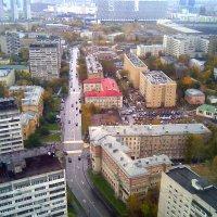 Москва с 28-го этажа... Вид на район Хорошёвский и застроенную Ходынку. :: Елена