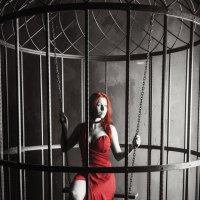 женщина в красном :: Константин Король