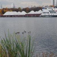 Москва река, баржи, утки, рыба. Через час соревнования по ловле рыбы. :: Татьяна Помогалова